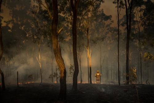 Moody's-Investor-Services-Australian-bushfire-insurance-loss-update