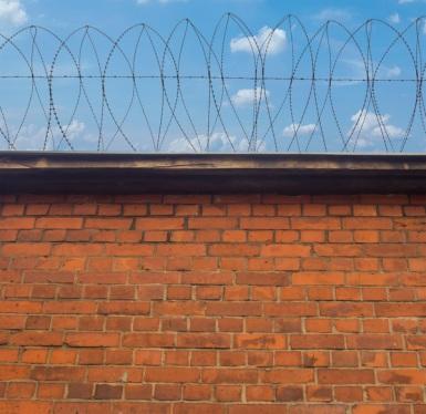 Insurance-fraud-gang-jailed