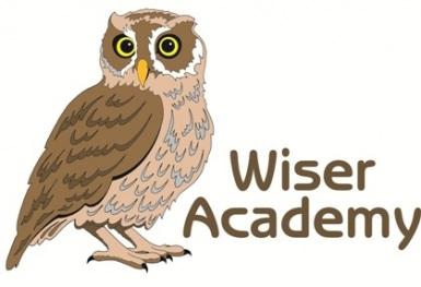Wiser-Academy