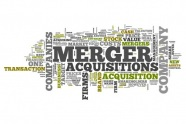 Liberty-Global-Transaction-Solutions-M&A-Insurance-claims-briefing