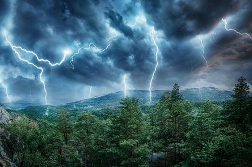 Lightning-rain-forest