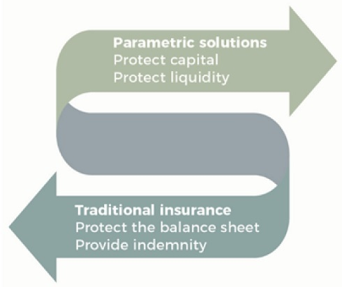 Parametrics-insurance-has-the-time-come?