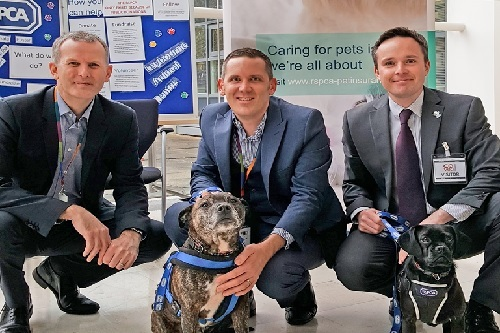 Photo-of-(L-R)-James-Reader-(CEO,-Covéa-Insurance),-Ian-Bubb-(Head-of-Pet,-Covéa-Insurance),-Andrew-Lyons-(Affinity-Partnerships-Manager,-RSPCA)-Dogs-(L-R)-Billy-and-Bella