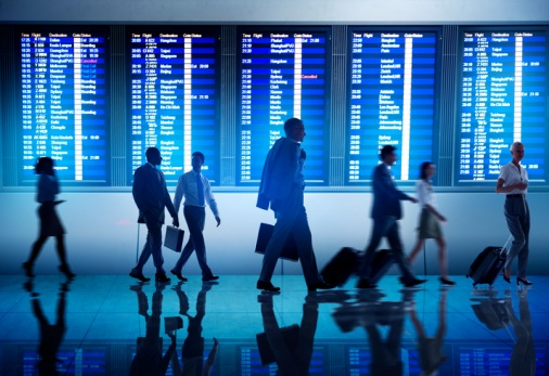 BIBA travel medial scheme